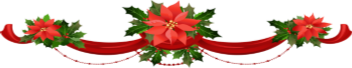 SJ Christmas Flowers
